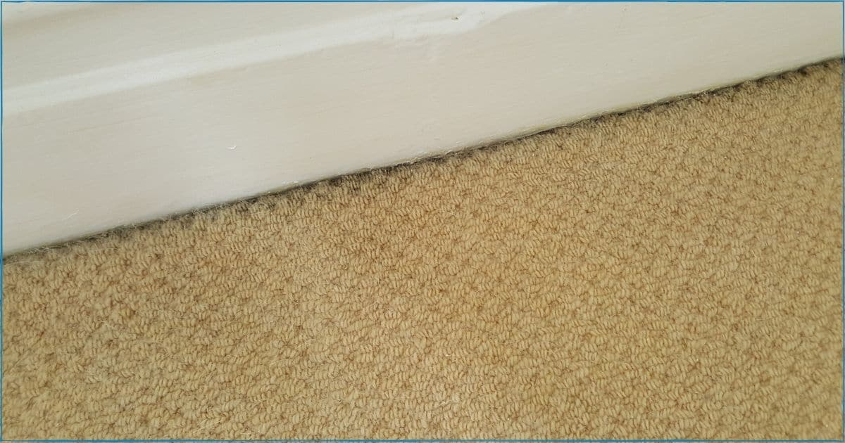 Black Lines Across Edges of Carpet