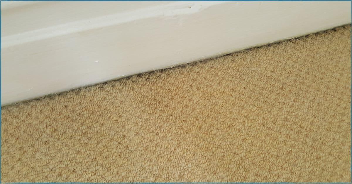 Black Lines Across Edges of Carpet
